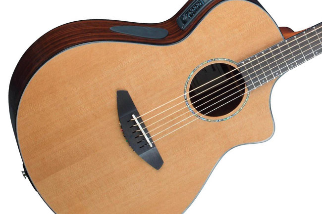 Breedlove Solo Concert Acoustic Guitar