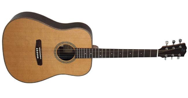 Dowina Danubius D Acoustic Guitar