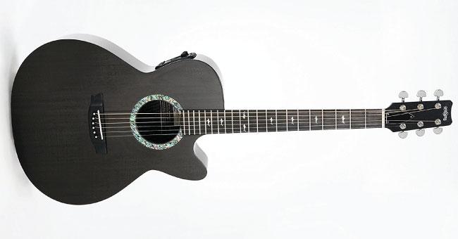 RainSong Guitars Concert Series CO-WS1000N2