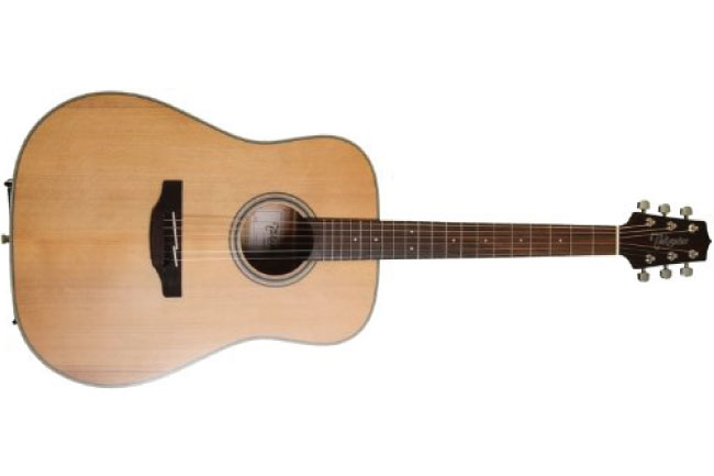 Takamine GD20 Dreadnought Acoustic Guitar